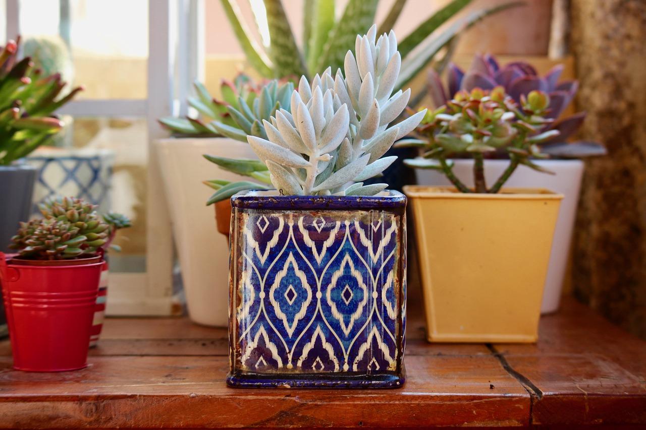 Vymaľujte si nanovo byt veselšími farbami, premiestnite nábytok, upracte si, kúpte si nové doplnky či zaobstarajte viac kvetov.